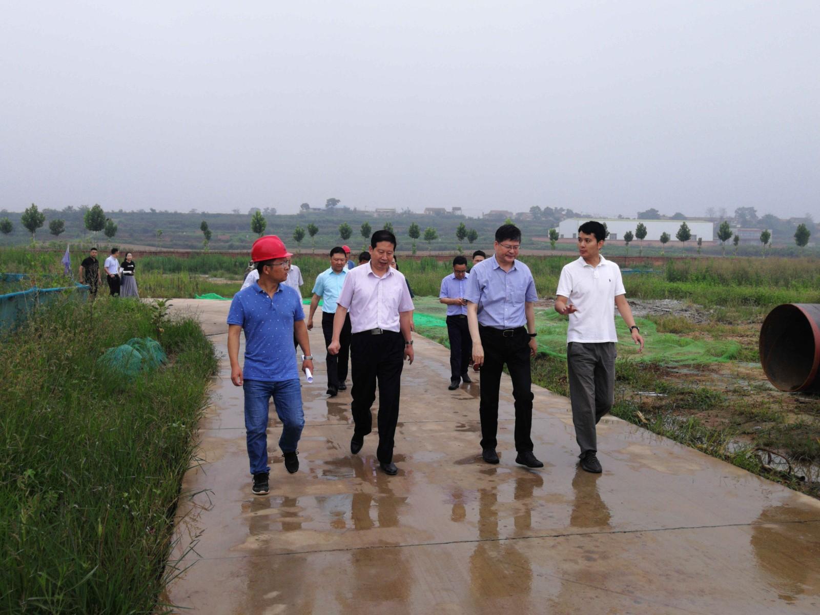省科技厅副厅长史高领到水bwin下载地址公司蟠龙新区污水处理厂项目调研